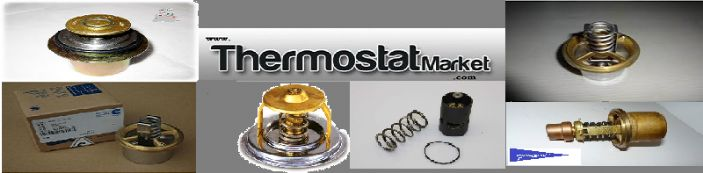 www.THERMOSTAT MARKET.com