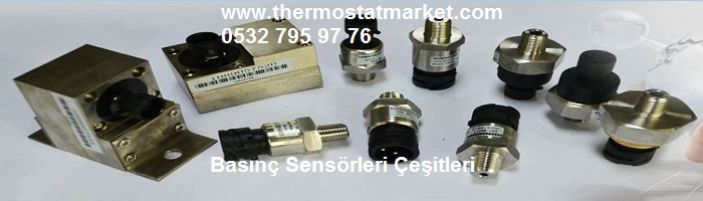 THERMOSTAT MARKET